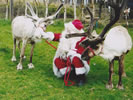 Santa, Rudolph the Reindeer and Friends
